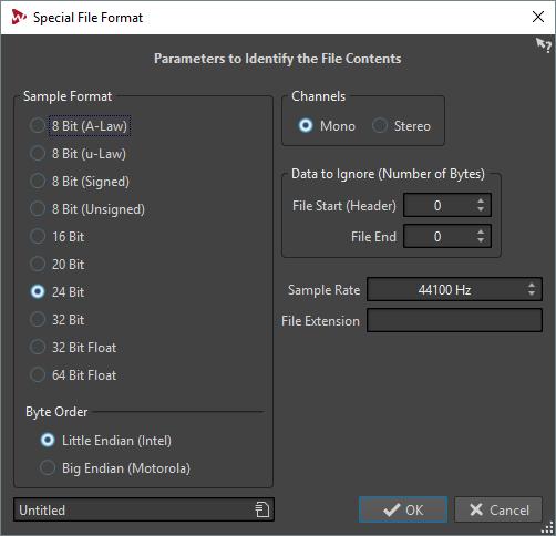 Spezifisches Dateiformat (Dialog)